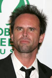 Walton Goggins Stock Photo