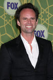 Walton Goggins Royalty Free Stock Images