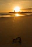 Walton Lighthouse in Santa Cruz CA Fotografia Stock Libera da Diritti