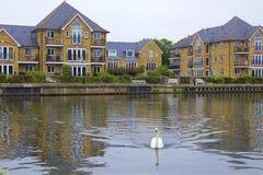 Walton-on Thames, England. Life on the Thames river, England stock images