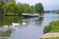 Walton-on Thames, England. Life on the Thames river, England royalty free stock images