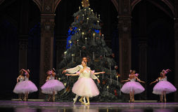 Waltz of the snowflakes- The second act second field candy Kingdom -The Ballet  Nutcracker Royalty Free Stock Photos