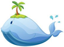 walvis Royalty-vrije Stock Afbeelding