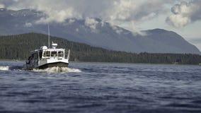 Walvis het Letten op bij de Binnenpassage Royalty-vrije Stock Foto