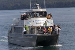 Walvis het letten op boot op Juneau, Alaska royalty-vrije stock fotografie