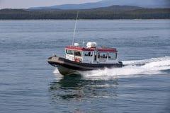 Walvis het letten op boot op Juneau, Alaska stock foto's