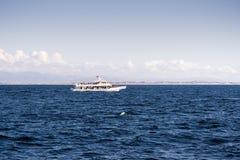 Walvis het letten op cruiseschip in Monterey-baai, Vreedzame Oceaankust stock fotografie