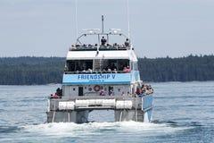 Walvis het letten op reis in Maine stock foto's