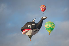 Walvisballon het Toenemen Stock Afbeeldingen