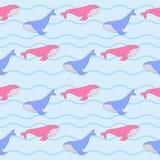 Walvissenpatroon Stock Afbeelding