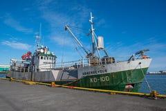 Walvisvangst en Overzees Komkommer vissersvaartuig Hrafnreyður in haven stock foto