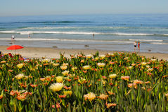 Walzing Along in Del Mar, California II. Walking around the ocean front area in Del Mar, California stock images