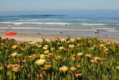 Walzing entlang in Del Mar, Kalifornien II Stockbilder