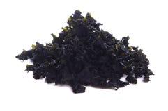 Wamake. torr brun alg Royaltyfri Bild