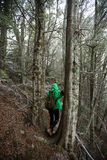 Wamen adultos jovenes que caminan en bosque de la haya en nieve Imagen de archivo