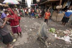 Wamena, Indonésia - 9 de janeiro de 2010: Os povos estão no mercado local de Wamena no vale de Baliem, Papuásia-Nova Guiné imagem de stock