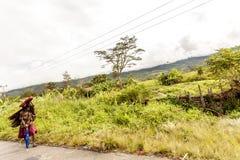 Wamena, Indonésie - 9 janvier 2010 : La femme de Dani soutiennent la charge le long d'une route rurale dans la vallée de Baliem,  photos libres de droits