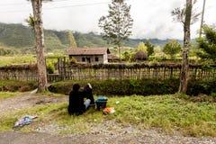 Wamena, Indonésie - 9 janvier 2010 : Vêtements de lavage de femme de Dani sur une route rurale dans la vallée de Baliem, Papouasi image libre de droits