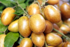 Wampee fruit Stock Photography