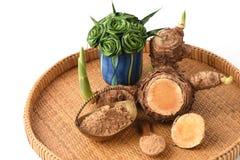 WAN-chak-mot-luk (nome tailandês) (xanthorrhiza Roxb da curcuma ) Hastes, secadas e pulverizadas Fotografia de Stock