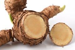 Wan-chak-mot-luk (Thai name) (Curcuma xanthorrhiza Roxb.) Stalks. Royalty Free Stock Images