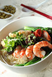 Wan Tan Noodles. Asian Wan Tan noodles with other ingredients royalty free stock photo