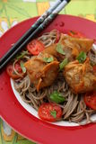 Wan Tan. Some asian wan tan filled with meat with somen noodles stock image