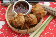 Wan Tan. Some asian wan tan filled with pork meat Stock Photography