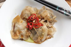 Wan Tan. Some asian wan tan filled with pork meat stock images