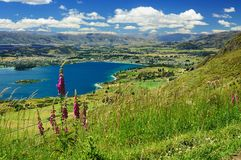 Wanaka Royalty Free Stock Photo