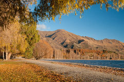 Wanaka do lago Imagem de Stock Royalty Free