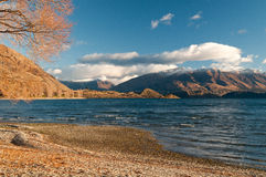Wanaka do lago Fotografia de Stock Royalty Free