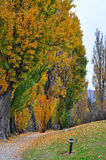 Wanaka, Neuseeland Stockfotos