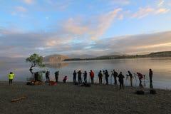 Photographers in front of the famous Wanaka Tree, Lake Wanaka, South Island, New Zealand stock photo