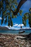 Wanaka See-Südinsel Neuseeland Stockfoto