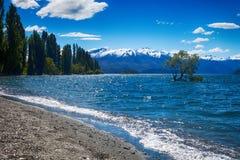 Wanaka See-Südinsel Neuseeland Stockbild