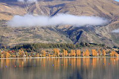 Wanaka,South Island New Zealand. Royalty Free Stock Photography