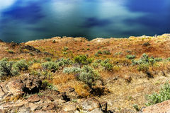 Wanapum Lake Colombia River Wild Horses Monument Washington Stock Photography