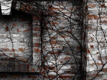 Wand Stockfotos