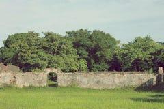 Wand auf einem Gebiet in Asien Lizenzfreies Stockbild