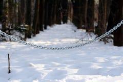 Wand der Kette im Wald Lizenzfreies Stockfoto
