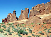 Wand der Natur Stockfotografie