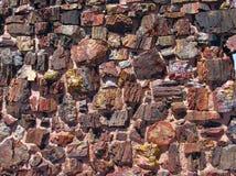 Wand des Achats haus- versteinerter Forest National Park stockfotografie