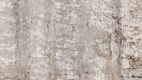 Wand des alten Betons Lizenzfreies Stockfoto