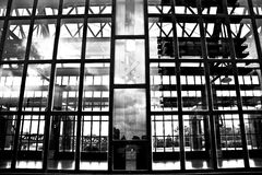 Wand des Glases Stockbilder