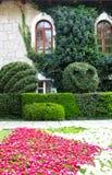 Wand des Hauses mit einem Efeu und einem Blumenbett Lizenzfreie Stockfotos