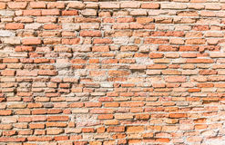 Wand des roten Backsteins lizenzfreies stockfoto