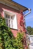 Wand des roten Backsteins mit Fenster, Abzugskanal und kriechender Hopfenanlage am sonnigen Tag Stockfotos