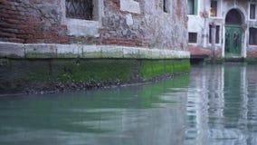 Wand eines historischen Geb?udes im Wasser eines Kanals in Venedig stock video footage