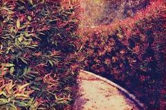 Wand-Gartenarbeit (Mignonretrostil) Lizenzfreie Stockbilder